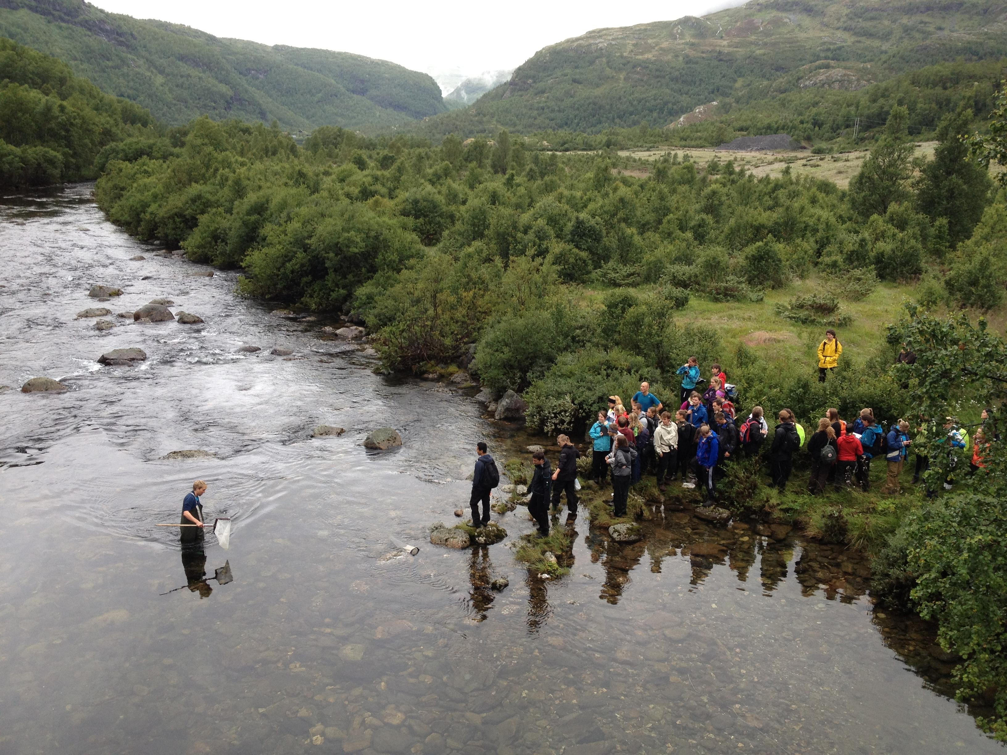 Kor mange studentar treng du til å vade i elv? Ein til å vade, og 41 til å sjå på og blogge om det.